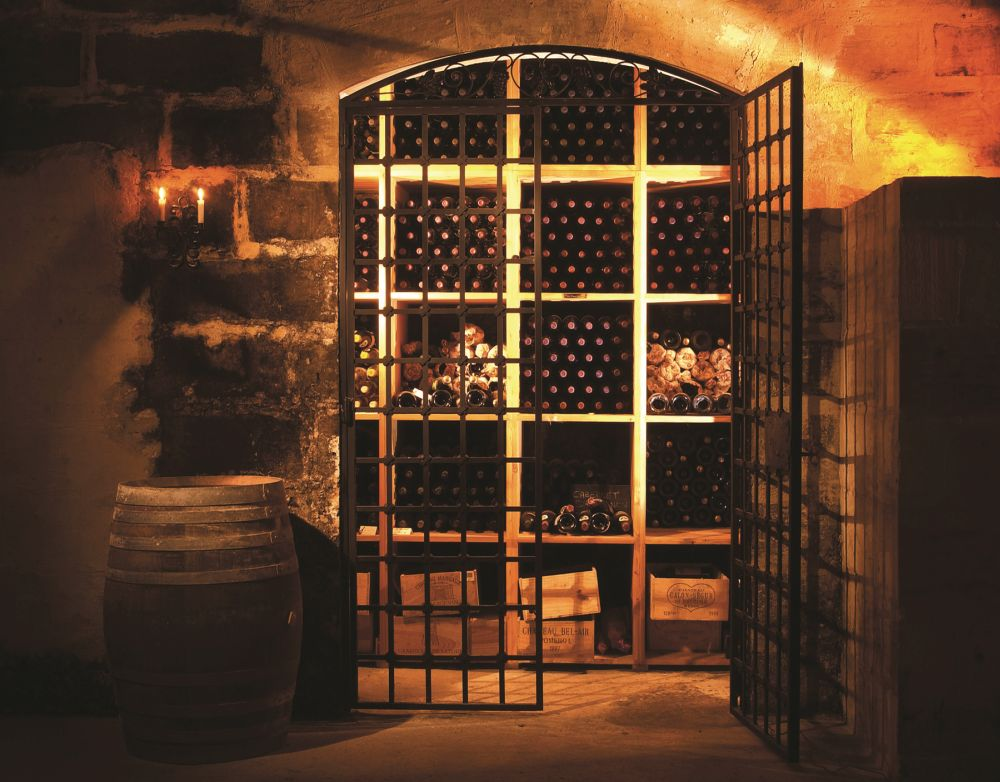 Wine cellar, wine bar and professional wine tasting