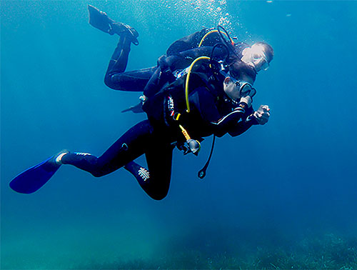 Diving for Beginners